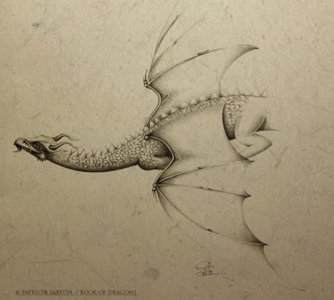 dragon.flying.back