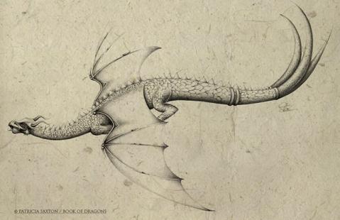 dragon.flying.full.back
