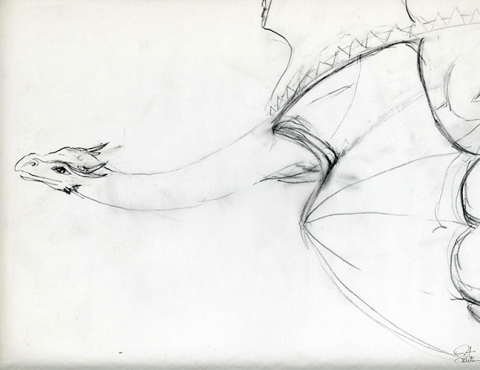 dragon_flying_sm.rough