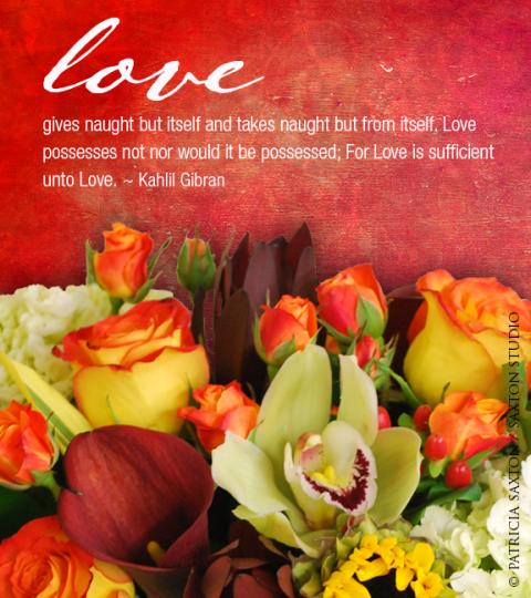 lovegivesnaught