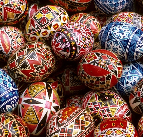 complex.eggs