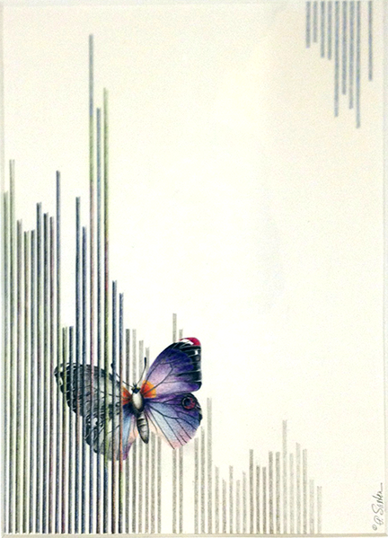 saxton_butterfly.caged_sm