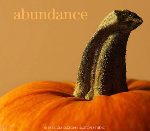 saxton_abundance.pumpkin