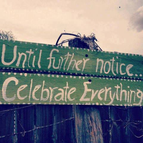 celebrate_everything