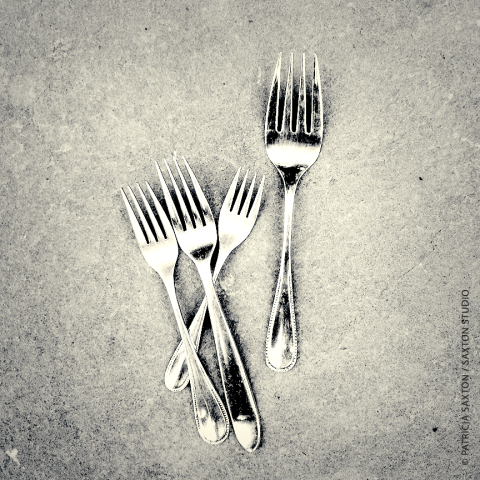 saxton_forks