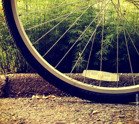 saxton_bike