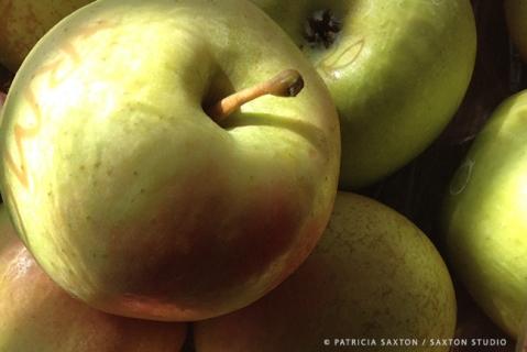 apples.clos.sig