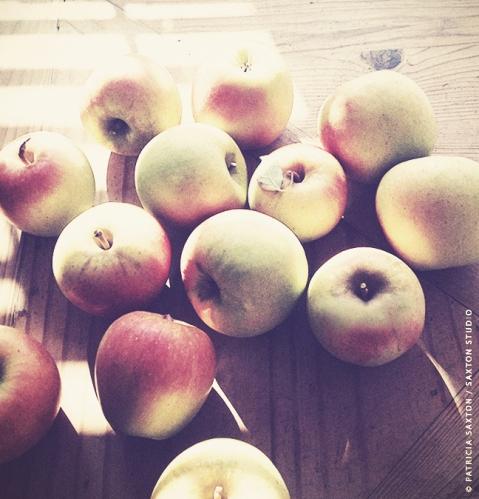 apples.slant.buttercream.sig2