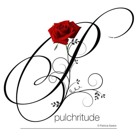 P_pulchritude2