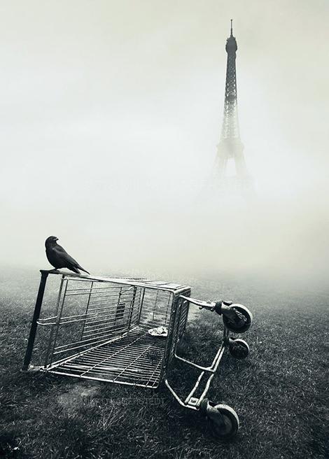 paris.fog2
