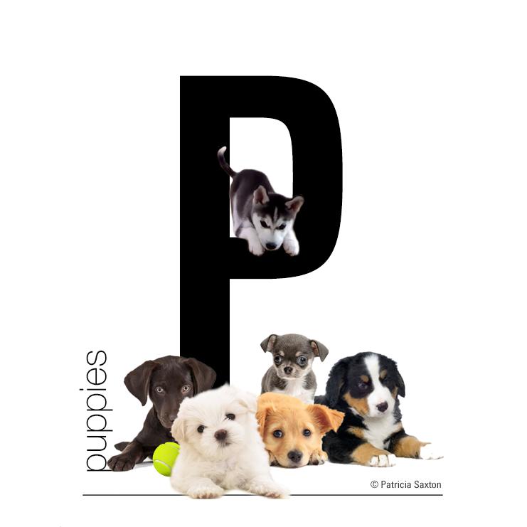 """~Primitive Puppy Dog /""""DASH/"""" Shelf Sitter~PATTERN #76"""