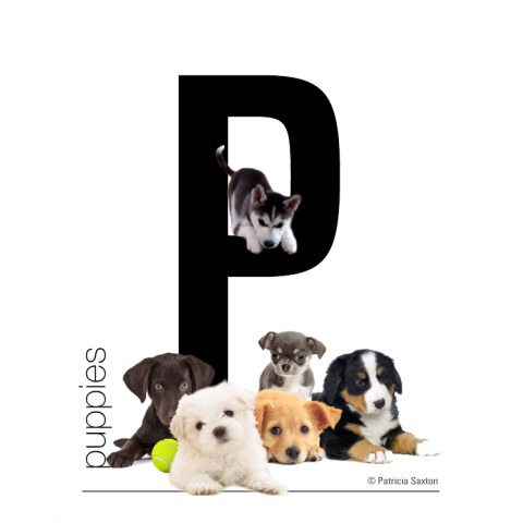 P_puppies