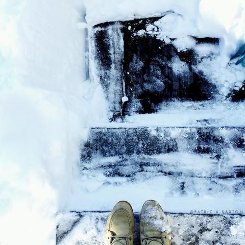 saxton_snowy.steps