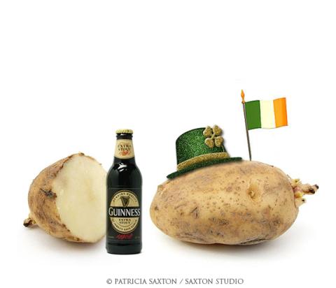 saxton.potato.guiness.